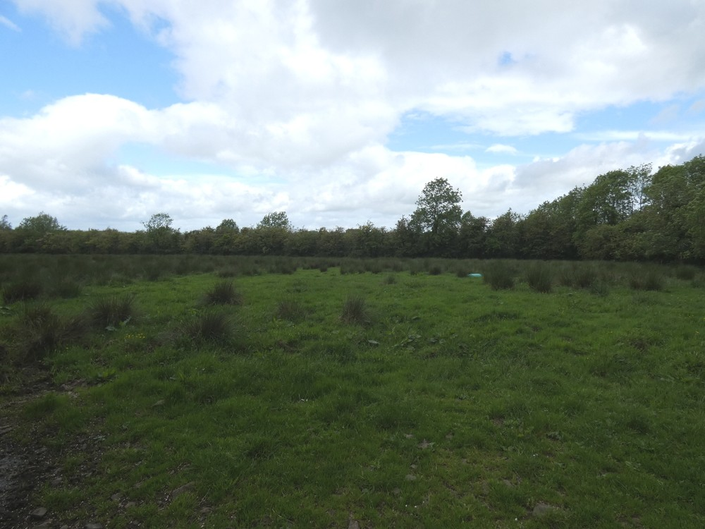 Site Approx. 170m North East of 74 Kilraughts Road